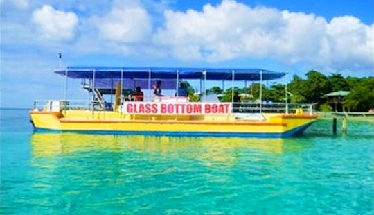 Glass Bottom Boat Tours In Flowers Bay