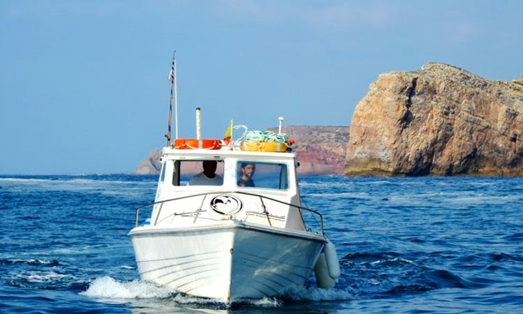 Coastal Tour, Fishing and Diving in Sagres