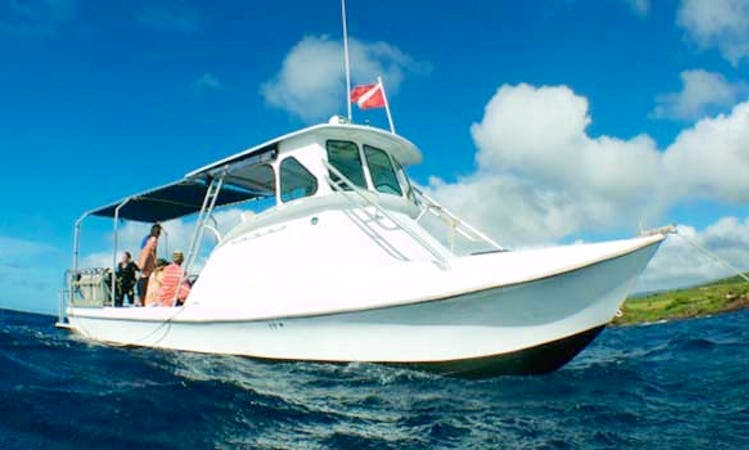 Diving Trips On 35-foot Force boat In Koloa, Hawaii
