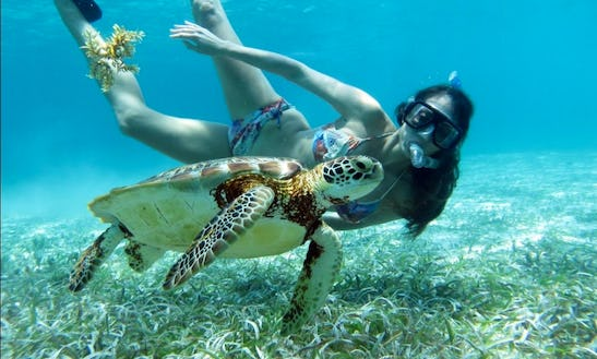 Snorkeling Trip To Southern Barrier Reef In Belize
