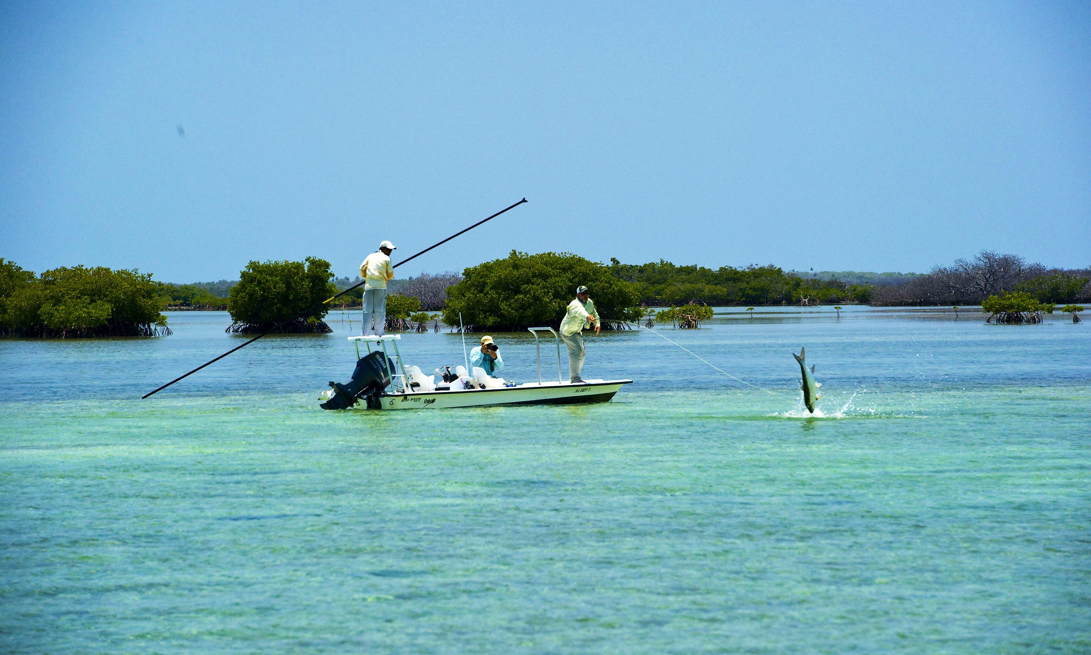 Sport fishing charter in Salinas Cuba