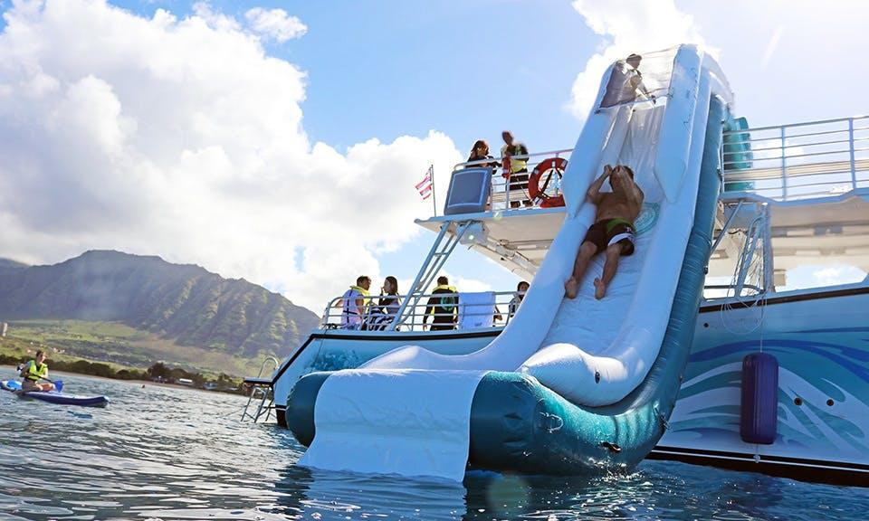 Dolphin Swimming Tours in Honolulu, Hawaii