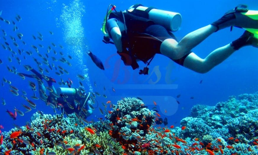 Amazing Diving Experience with Certified Guides in Grand Baie, Mauritius