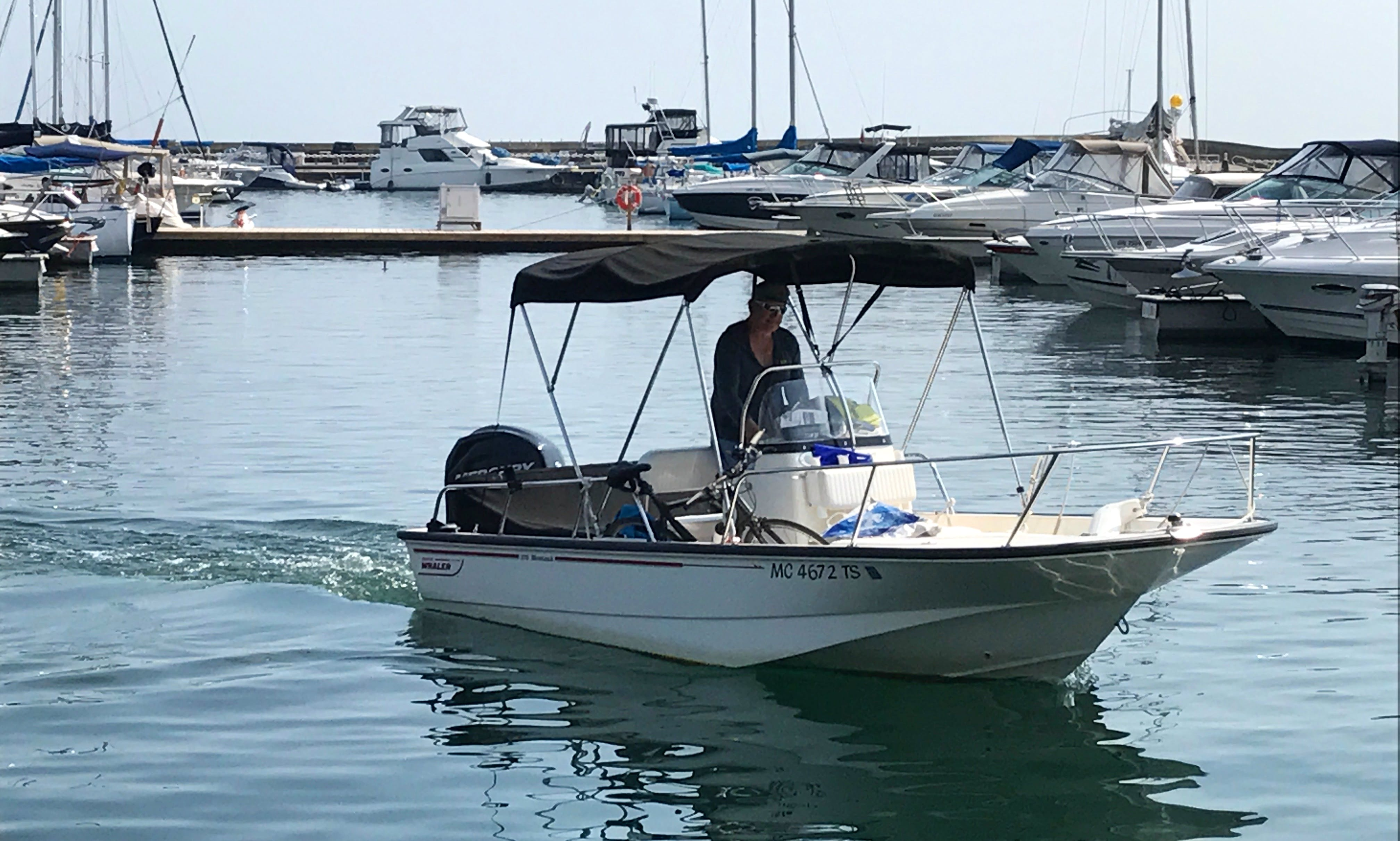 Boston Whaler for Rent in Toronto Harbour
