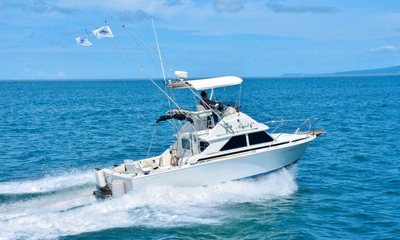 BERTRAM 28 / Fishing Boats rental in Puerto Vallarta