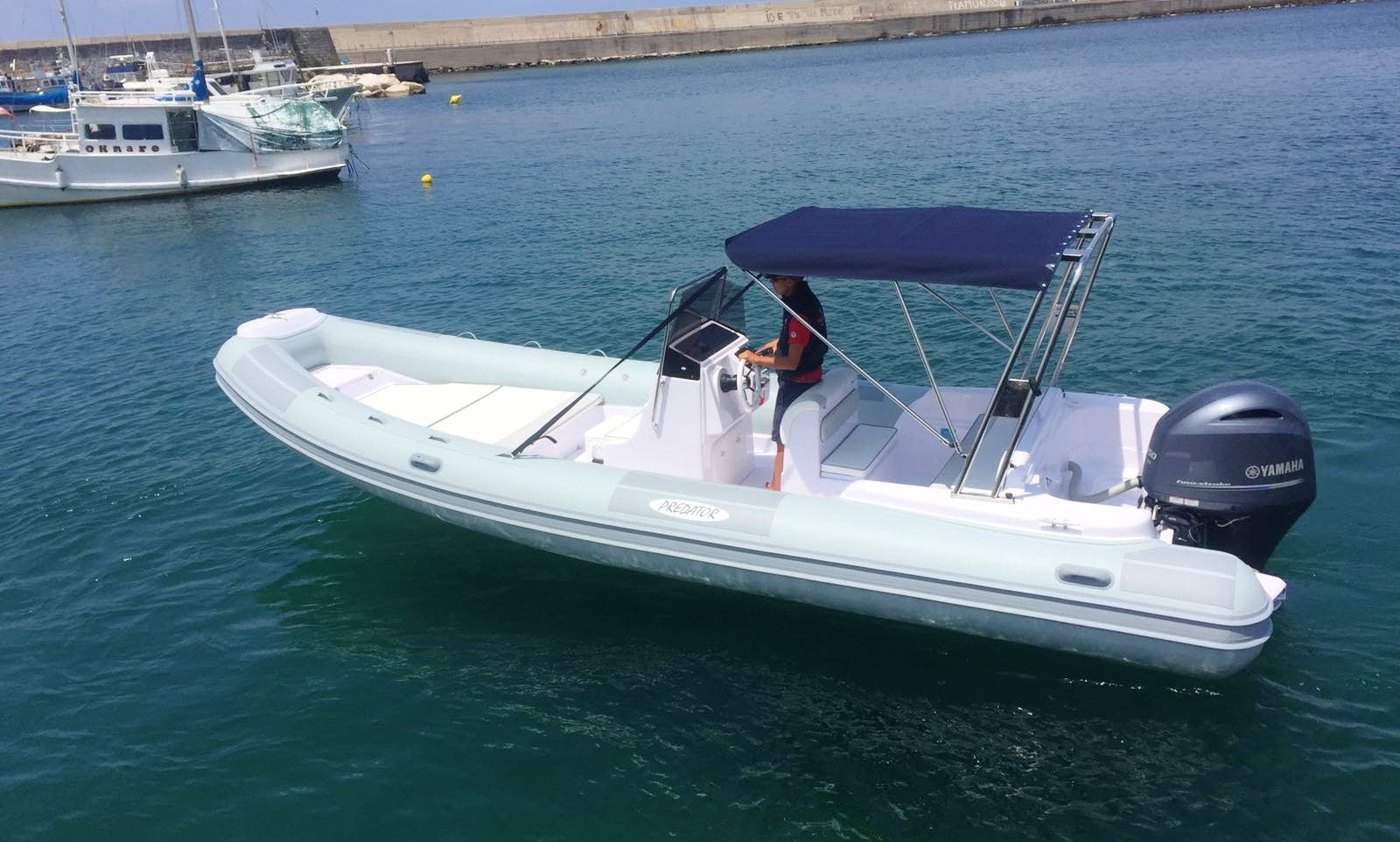 Predator 7.3 Meters RIB Rental for 8 People in Forio, Italy