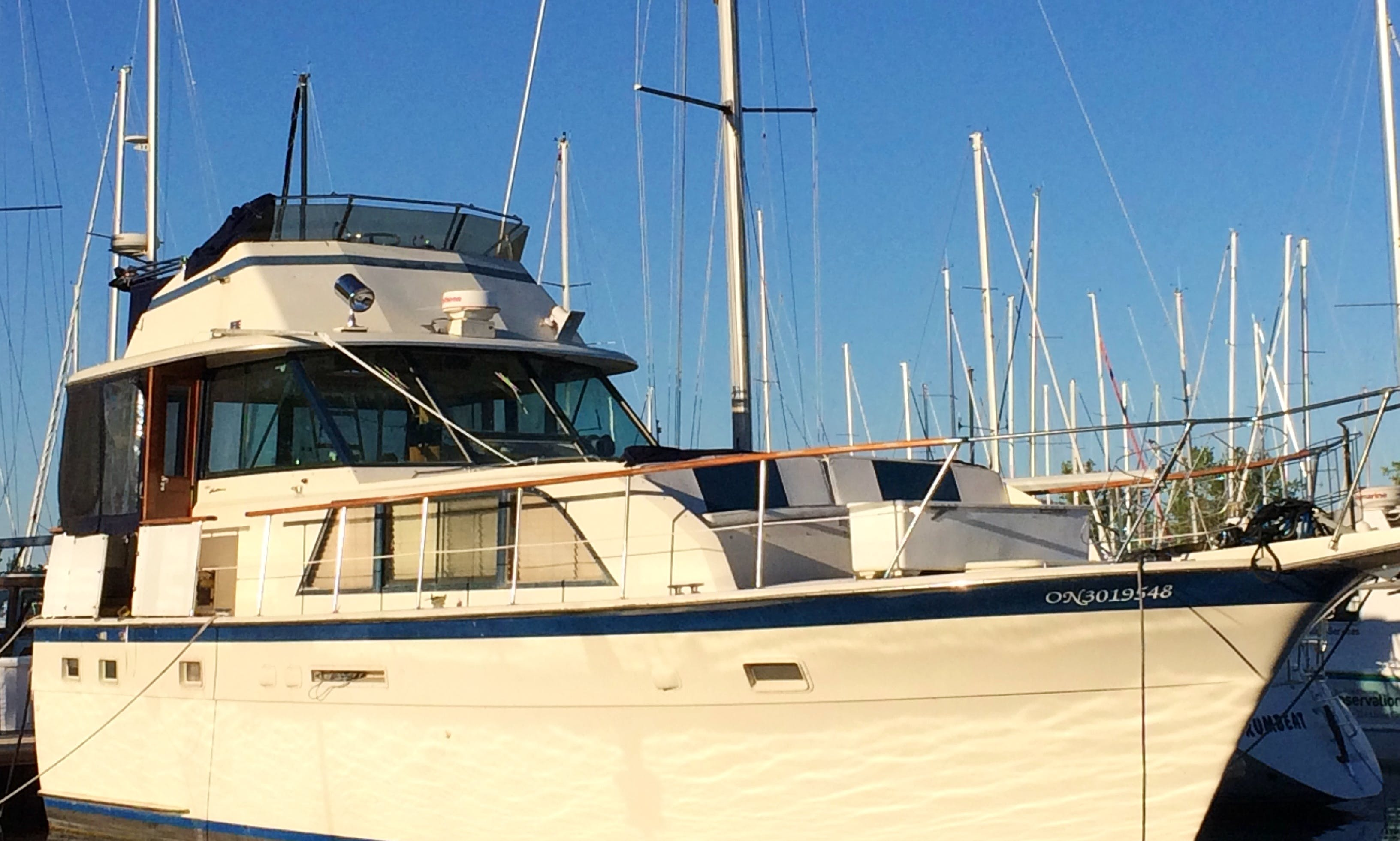 Private Yacht for rent with Captain. Toronto Harbour and Toronto island tours