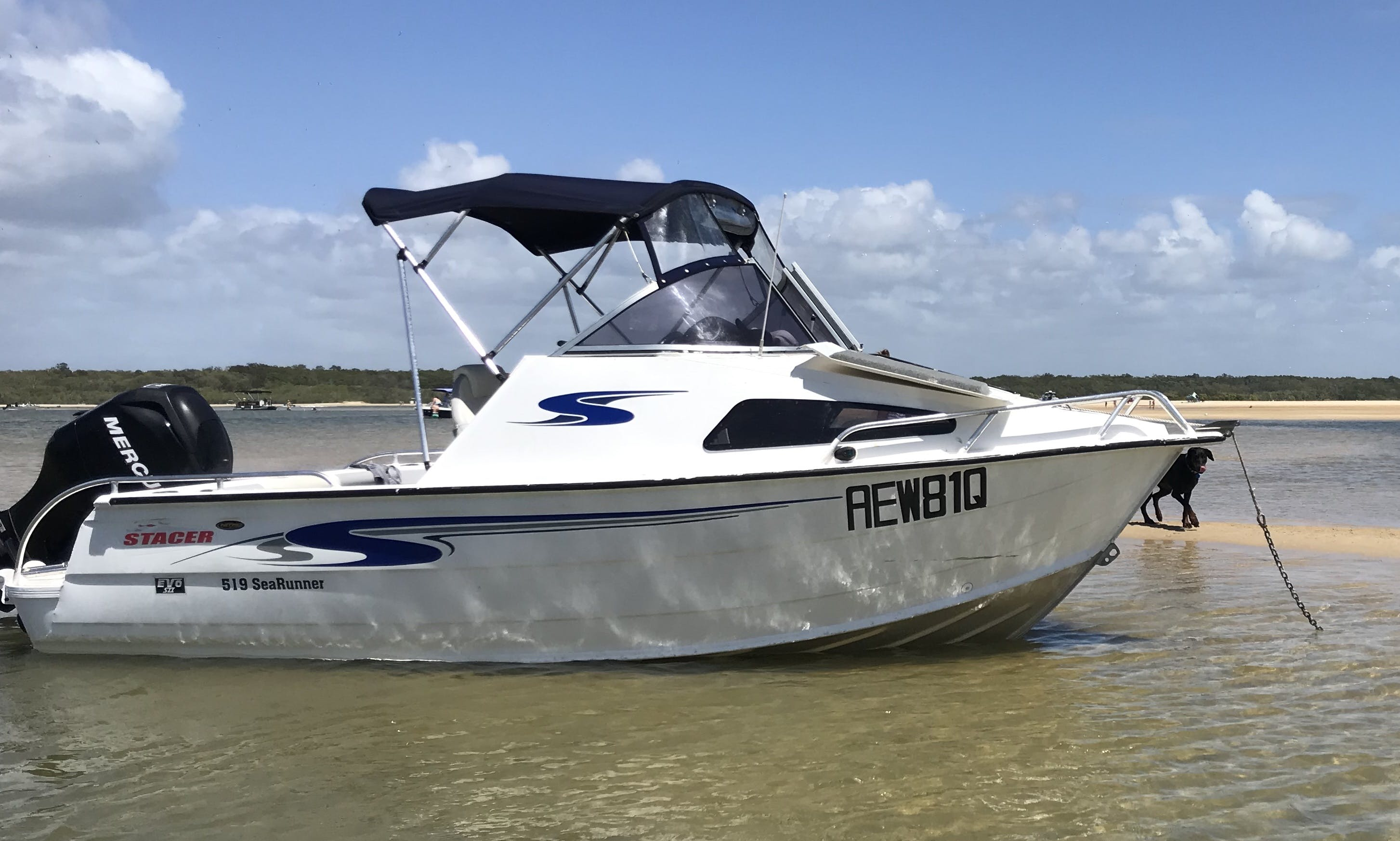 15 ft Stacer 519 Sea Runner Caddy Cabin for Rent in Yandina Creek, Australia