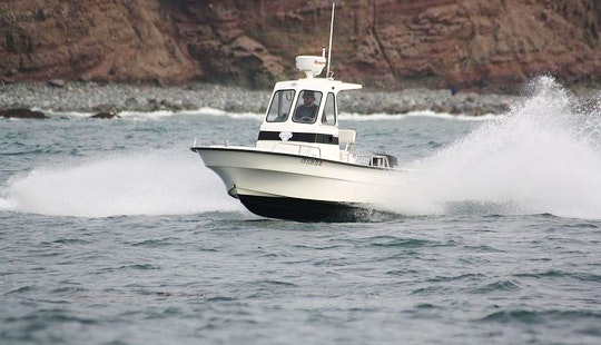 Best 21 Ft. Center Console Pilothouse Fishing Machine Available In Dana Point Southern California