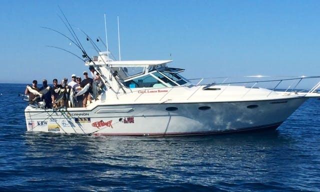 Book The Amazing Fishing Charter in Lake Michigan!