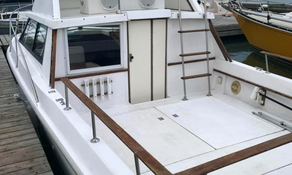 26' Penn Yan Flybridge for Family Fishing Adventure in Lake Erie