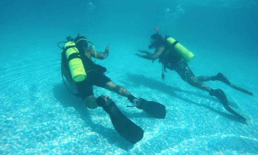 Discover Scuba Diving In Fujairah, UAE