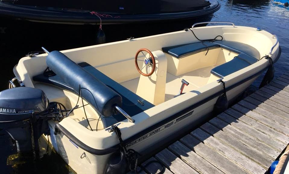 6-Person Center Console The Veramo for Rent in Vinkeveen, Netherlands