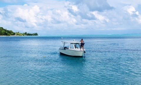 2 Tank Dives by Private Boat - 4 Hours Trip in Bora Bora!