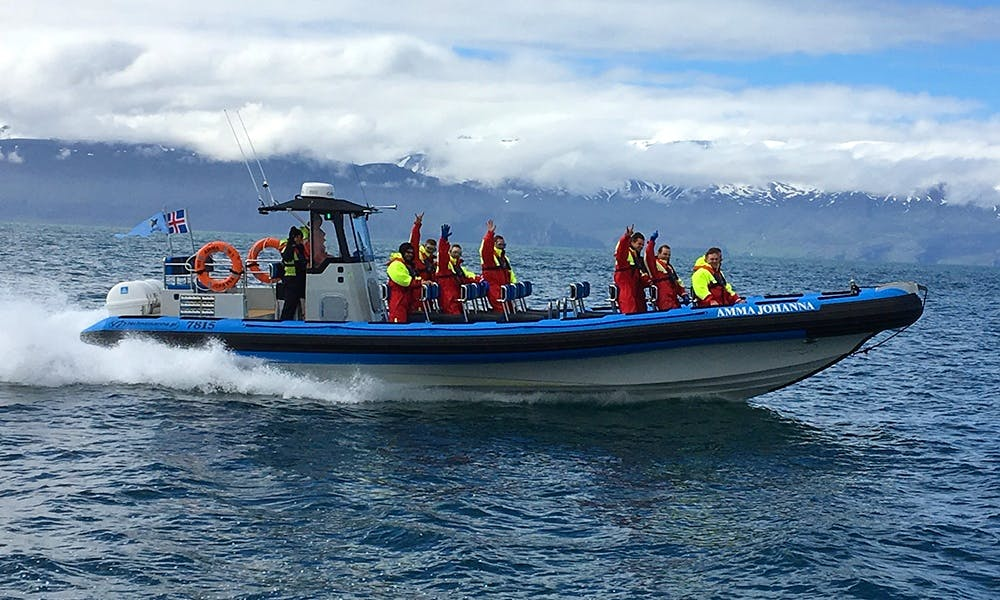 39' RIB Speedboat  - Perfect for Private Sea Adventure in Húsavík, Iceland