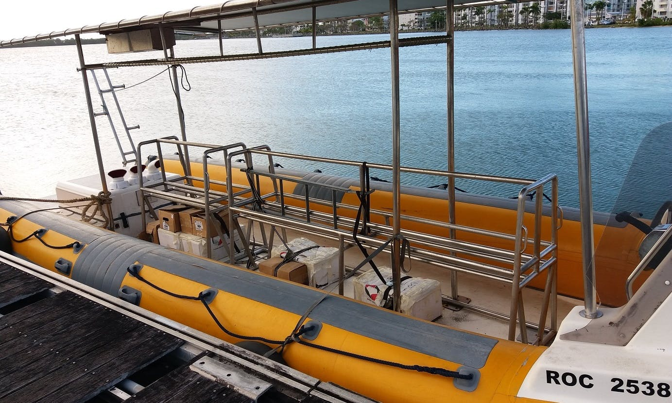 Boat Diving Trip in Portsmouth, Dominica