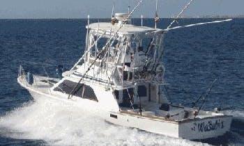 32' Blackfin - Puerto Aventuras Marina - Playa del Carmen