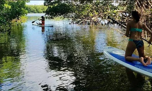Paddleboard Adventure In Piñones Natural Reserve