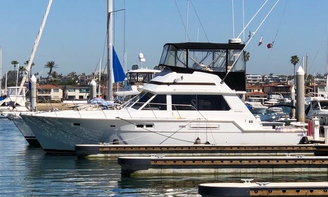 Charter this 45 ft Bertram Motor Yacht for 12 People in Long Beach, CA.
